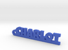CHARLOT Keychain Lucky 3d printed