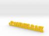 POMMELRAIE Keychain Lucky 3d printed