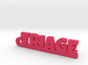 TRIAGE Keychain Lucky 3d printed