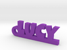 LUCY Keychain Lucky 3d printed
