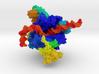 RNA Polymerase I 3d printed
