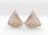 Baumann Earrings 3d printed