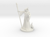 Dragonborn Wizard Male 3d printed