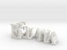 3dWordFlip: Eliana/Eran 3d printed