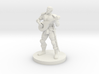 Male Half Elf Bard 3d printed