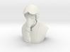 Pyro - Airborne Arsonist Bust 3d printed