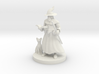 A Wizard and His Kitty 3d printed