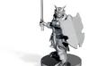 Dragonborn Heavy Paladin 3d printed