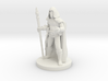 Male Elf Sorcerer with  Diamond Staff 3d printed