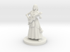 Half Elf Female  Bard 3d printed