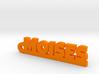 MOISES_keychain_Lucky 3d printed