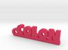 COLON_keychain_Lucky 3d printed