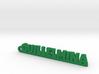 GUILLELMINA_keychain_Lucky 3d printed