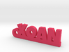 XOAN_keychain_Lucky 3d printed