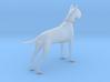 Printle Thing Danish Dog - 1/64 3d printed