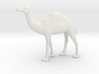 Printle Thing Dromedary - 1/72 3d printed