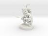 Gnome Ranger / Rogue 3d printed