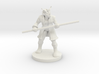 Red Dragonborn Male Monk with Staff 3d printed