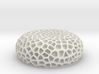 Coral Luminescent-Great Barrier Reef 3d printed