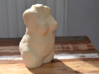 Torso Rubens Sand color 3d printed Photo 3D printed Model
