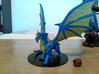 Young Blue Dragon 3d printed
