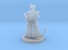 Catfolk Female Bard 3d printed