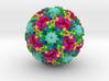Human Papillomavirus 3d printed