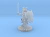 Heavy Dragonborn Paladin 3d printed