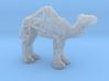 Dromedary Camel (adult) 3d printed