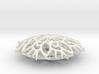 Rosetta Christmas Snowflake 3d printed