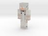 SkinseedSkin_1540574408204 | Minecraft toy 3d printed