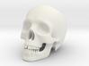 Human Skull (Medium Size-10cm Tall) 3d printed