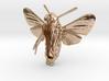 Hummingbird Hawk-Moth Pendant (hollow version) 3d printed