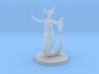 Female Merfolk Waterlancer 3d printed