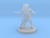 Kitsune Cleric with Scale Armor and Dagger 3d printed