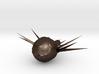 axolotl fetus 3d printed