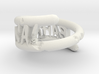 weathered and chipped bahal na! ring 3d printed