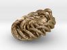 Twistlink from the Ammonite Range by unellenu 3d printed