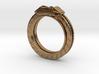 Disc brake Ring 3d printed