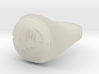 ring -- Thu, 09 Jan 2014 03:11:06 +0100 3d printed