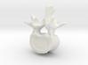 L2 lumbar vertebral body 3d printed