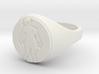 ring -- Sat, 08 Feb 2014 02:28:39 +0100 3d printed