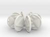 Vegetarian / Animal Rights Earrings 3d printed