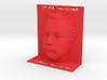 Illusion Albert Einstein - 120mm 3d printed