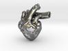 Human Heart 3d printed
