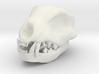 Cat Skull 4 Inch 3d printed