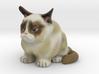 Grumpy Cat V2 3d printed