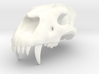 Homotherium skull, maxilla 3d printed