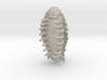 Isopod 3d printed