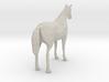 Horse Dapple 3d printed